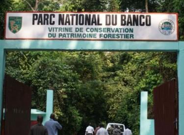 Metro d'Abidjan : 25 ha du parc du Banco cédés pour le projet