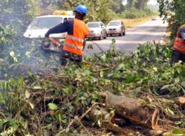 Nettoyage des abords de l'axe Alépé-Abidjan